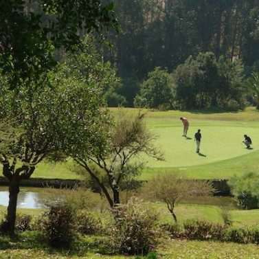 https://chilegolftours.com/wp-content/uploads/2015/09/Golf-Granadilla2-377x3771-377x3771-377x3771-377x377.jpg