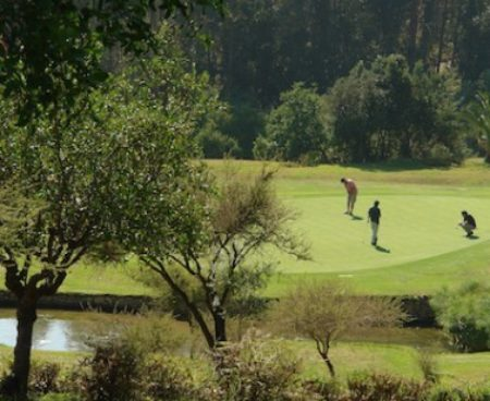 https://chilegolftours.com/wp-content/uploads/2015/09/Golf-Granadilla2-377x3771-377x3771-377x3771-450x368.jpg