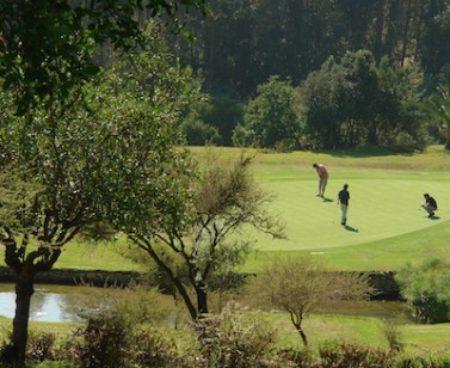 https://chilegolftours.com/wp-content/uploads/2015/09/Golf-Granadilla2-377x3771-377x3771-377x3771-450x368.jpg